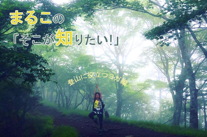ブログmaruko