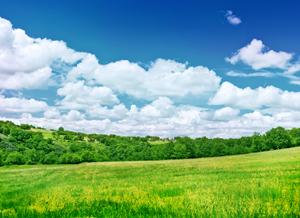 beautiful_nature.psd
